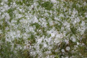 Hail resized for blog